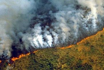 Amazonía | Gobierno de Brasil no reconoce la magnitud de los incendios